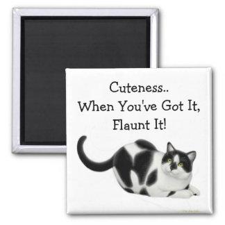 Imán del gato del Cuteness