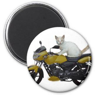 Imán del gato del motorista