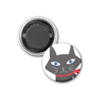 Imán del gato del ojo azul