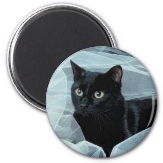 Imán del gato negro