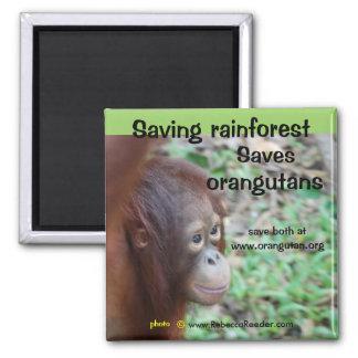 Imán del hábitat del orangután