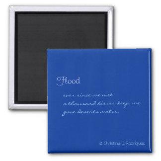 Imán del Haiku de la inundación