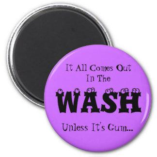 Imán del lavadero - todo sale en el lavado
