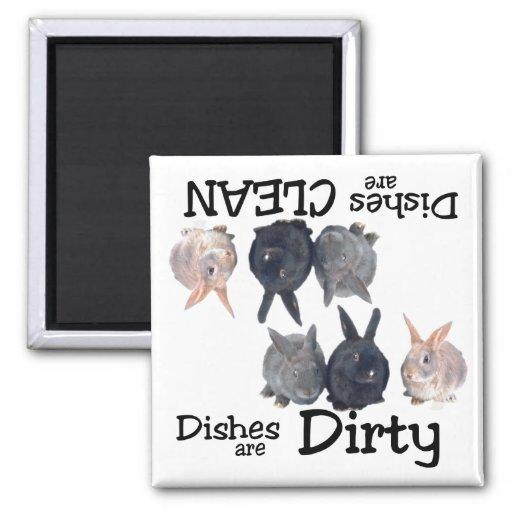 Imán del lavaplatos de los amantes del conejito