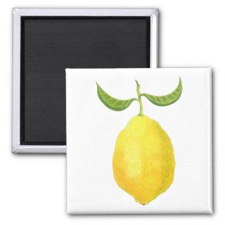 Imán del limón