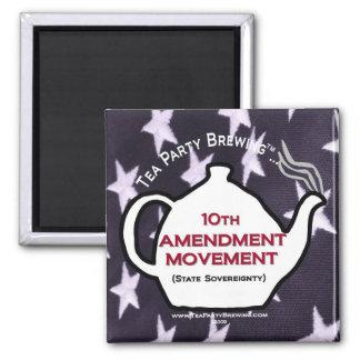 Imán del movimiento de la enmienda TP0109 10mo
