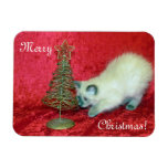 Imán del navidad de la sabana (rescate del gatito