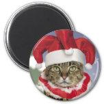 Imán del navidad del gato del bufón de Santa