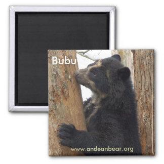 Imán del oso de Bubu