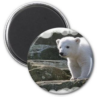 Imán del oso polar del bebé