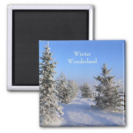 Imán del país de las maravillas del invierno