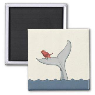 Imán del pájaro y de la ballena