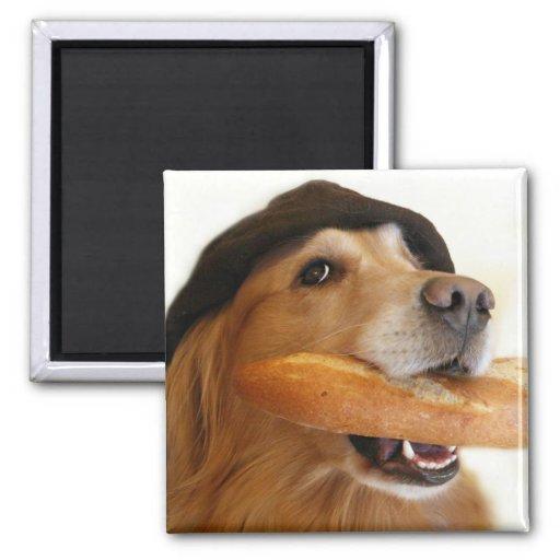 Imán del pan francés del golden retriever