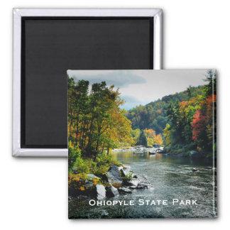 Imán del parque de estado de Ohiopyle