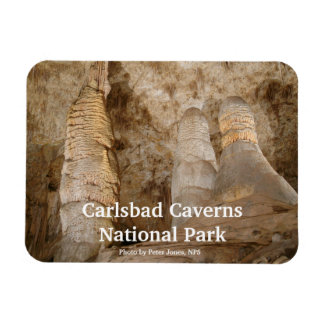 Imán del parque nacional de las cavernas de Carlsb