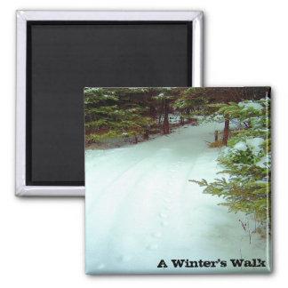 Imán del paseo de un invierno