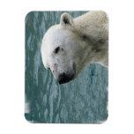Imán del perfil del oso polar