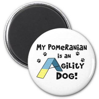 Imán del perro de la agilidad de Pomeranian