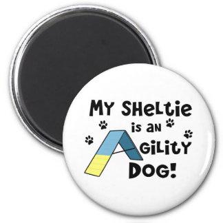 Imán del perro de la agilidad de Sheltie