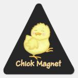 Imán del polluelo pegatinas de triangulo personalizadas