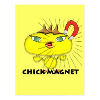Imán del polluelo tarjetas postales
