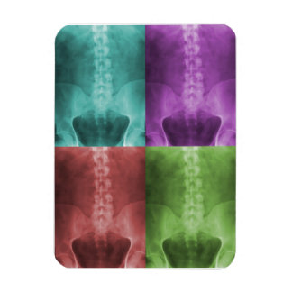 Imán del premio del arte de la radiografía de Digi