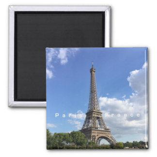 Imán del recuerdo de París Francia de la torre