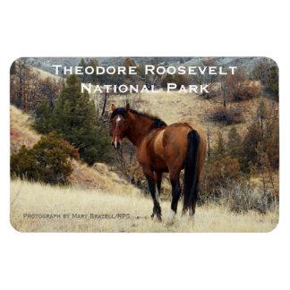 Imán del recuerdo de Theodore Roosevelt NP