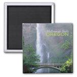 Imán del recuerdo del viaje de Oregon de las caída