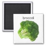 Imán del refrigerador del bróculi