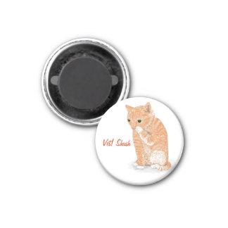 Imán del refrigerador del gatito