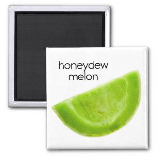 Imán del refrigerador del melón de ligamaza