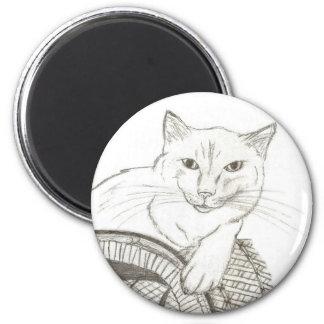 Imán del retrato de Ragdoll del gato
