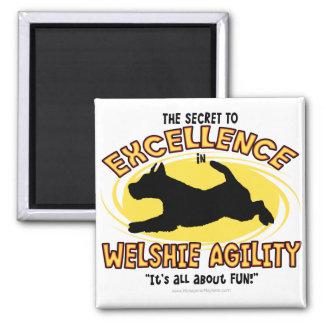 Imán del secreto de Terrier galés de la agilidad