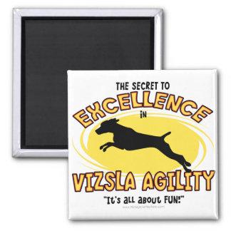 Imán del secreto de Vizsla de la agilidad