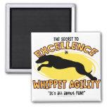 Imán del secreto de Whippet de la agilidad