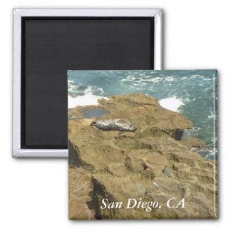 Imán del sello de San Diego que toma el sol