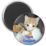 imán del sheldon del equipo