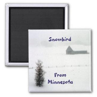 Imán del Snowbird de Minnesota