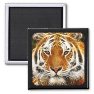 Imán del tigre