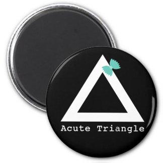 Imán del triángulo agudo
