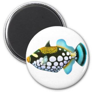 Imán del Triggerfish del payaso
