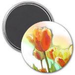 Imán del tulipán de la sol de Christi Werner