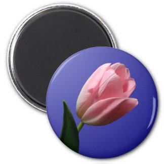 Imán del tulipán del boda de la primavera