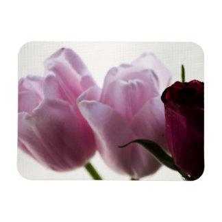 Imán del vinilo de los tulipanes 3258