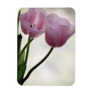Imán del vinilo de los tulipanes 3265