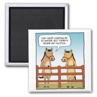 Imán divertido del caballo