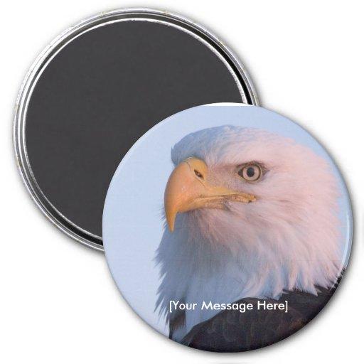 Imán/Eagle calvo