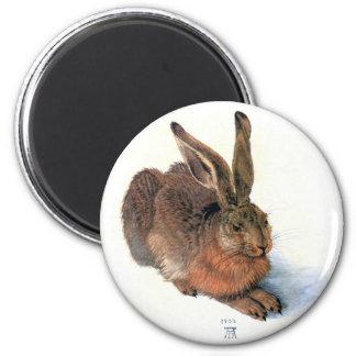 Imán: El conejo Imán Redondo 5 Cm