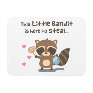 Imán enmascarado lindo del mapache del bandido